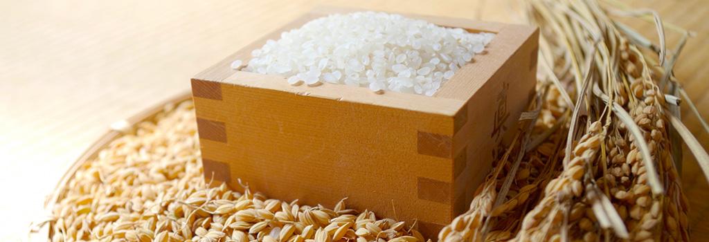 高石市、お米の配達ははたやすへ。2000円以上で無料配達しています。おいしいお米がたくさんありあす